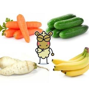 NO HAY NADA COMO COMERSE UN BUEN NABO  Es lo que tiene la fruta de temporada. Llena de vitaminas y de oligoelementos, minerales y alimenta que da gusto. Pocos placeres comparables a llevarse un buen pepino a la boca. O trincarse un plátano bien gordo y sabrosón. Que no quede ni la piel. Tampoco vamos a despreciar comerse una buena zanahoria. De las que no entran en la boca casi. Y ¡qué decir de los nabos! ¡Es que nos los comeríamos de dos en dos! ¡Qué ricos están!  VENGA HIJOS DE FRUTA. ¿SOIS DE COMER PEPINO A DOS CARRILLOS O MÁS DE COMER PLÁTANO HASTA NO PODER MÁS? ¿CUÁL OS DA MÁS GUSTICO?
